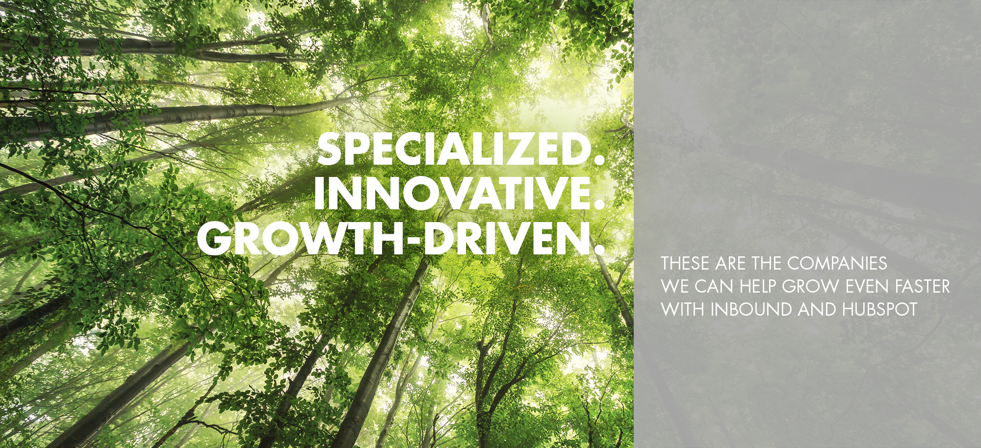 specialized innovative growth-driven